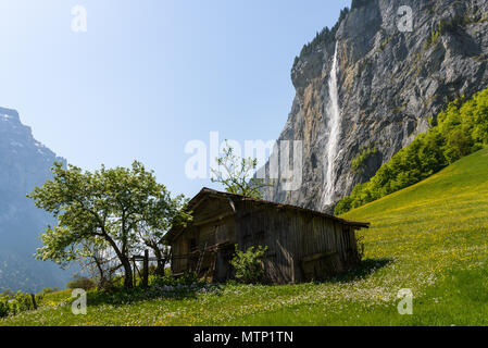 Old dark barn standing on a hill slope under Spissbach waterfall on a clear day in may with blooming apple tree nearby and flowers everywhere - Stock Photo