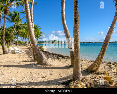 Coconut palms, turquoise sea, white beach and two chairs by the beach shore. Sainte-Anne Guadeloupe, Antilles, Caribbean. - Stock Photo
