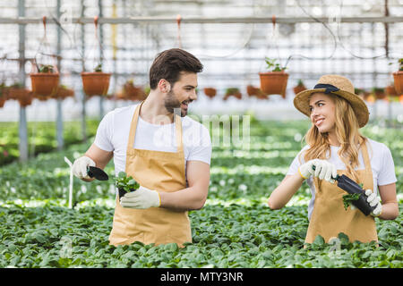 Couple of gardeners planting flowers in greenhouse - Stock Photo