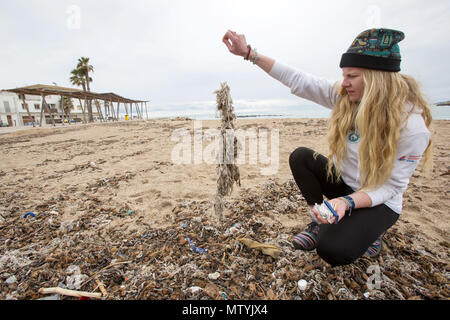 20 March 2018, Spain, Mallorca: Alice Mason from the environment organisation 'Ondine Baleares' examining rubbish on the beach in the Palma bay which has got mixed up with Neptune grass and sanitary products. Sewage works in Palma quickly become overburdened when it rains and raw sewage ends up flowing directly into the sea. The rubbish then lands on the beaches and mixes with the Neptune grass in the sand. Photo: Bodo Marks/dpa - Stock Photo
