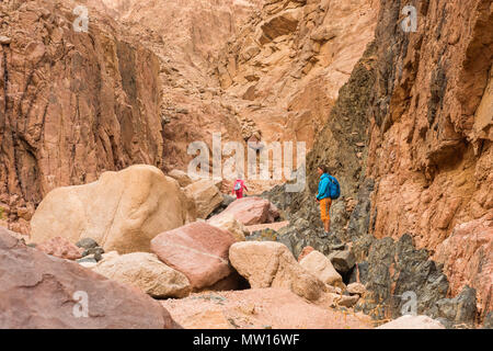 Woman Hiker with backpack enjoy view in desert - Stock Photo