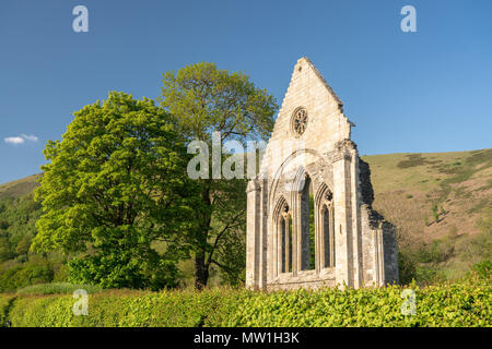 Ruined wall and window of Valle Crucis abbey near Llangollen - Stock Photo
