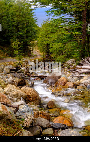 A small streams runs down next to the path that leads up to the Martial Glacier, a popular hiking destination close to the city of Ushuaia, Argentina. - Stock Photo