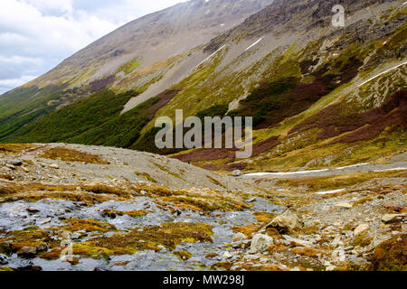A small stream runs down. The water comes from the snowy Martial glacier and crosses the Argentinian city of Ushuaia to end in the Beagle Channel. - Stock Photo