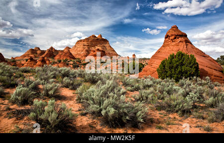 View of Rock Formations at Paw Hole in the South Coyote Buttes in Arizona - Stock Photo