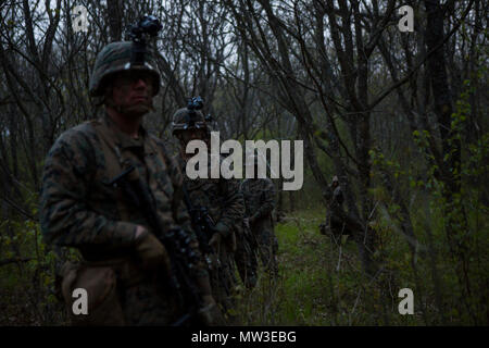 U.S. Marines with Black Sea Rotational Force (BSRF) 17.1 patrol during Exercise Platinum Eagle 17.2 at Babadag Training Area, Romania, April 27, 2017. Marines conducted patrol-based exercises to improve on skills with night vision optics through various terrains. With its flexibility and versatility, BSRF is ideally suited to carry out security cooperation efforts and a wide range of other missions in the European reigon. - Stock Photo