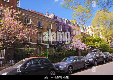 Beautiful spring colour and period houses in Kensington Square, West London, England, UK - Stock Photo