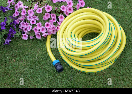 Yellow hose pipe on a grass in a garden - Stock Photo
