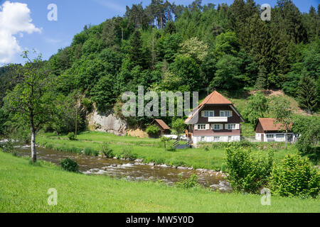d gutach schwarzwaldbahn gutach gutach valley black forest stock photo 11851257 alamy. Black Bedroom Furniture Sets. Home Design Ideas