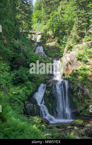 Triberg waterfalls, one of the highest waterfalls of Germany, Triberg, Black Forest, Baden-Wuerttemberg, Germany, Europe - Stock Photo