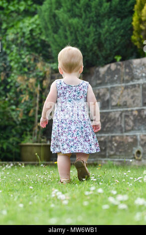 Beautiful Young baby girl toddler at 18 months old with short blonde hair walking away from camera in garden - model released Photograph taken by Simo - Stock Photo
