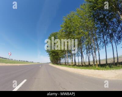 Trees grow along the highway, asphalt road and blue sky, wide angle - Stock Photo