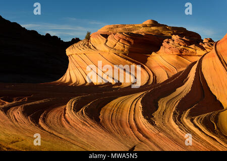 Last light on the 'Second Wave' in the Coyote Buttes North special permit area of the Vermillion Cliffs wilderness area on the border with Utah and Ar - Stock Photo