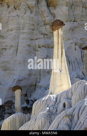 The famous Wahweap hoodoos in Grand Staircase Escalante National Monument. These black topped hoodoo's are some of the largest and most delicate hoodo - Stock Photo