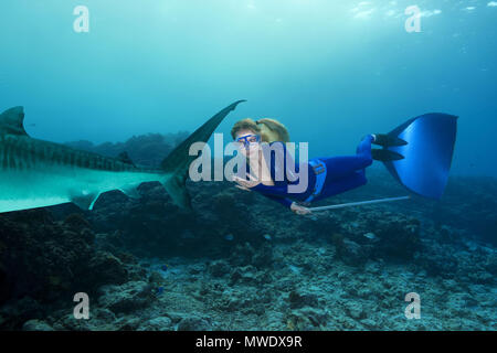 Fuvahmulah Island, Indian Ocean, Maldives. 10th Feb, 2018. Female freediver swim near Tiger Shark Credit: Andrey Nekrasov/ZUMA Wire/ZUMAPRESS.com/Alamy Live News - Stock Photo