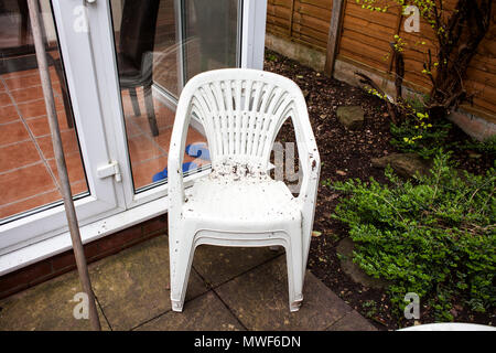 Dirty garden plastic chairs ready for cleaning. Home improvements and renovations. Plastic objects in the garden. Old and used garden furniture. White plastic garden chairs. - Stock Photo