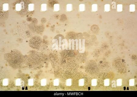 Grunge dripping cracked film strip frame in sepia tones. Mossy wall surface. - Stock Photo