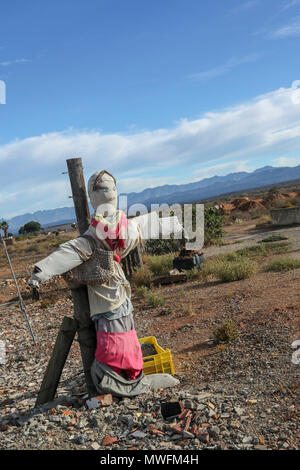 Colourful scarecrow woman in the landscape, Oudtshoorn, garden route, south africa