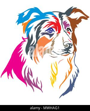 Colorful decorative portrait of dog Border Collie, vector illustration in different colors isolated on white background - Stock Photo