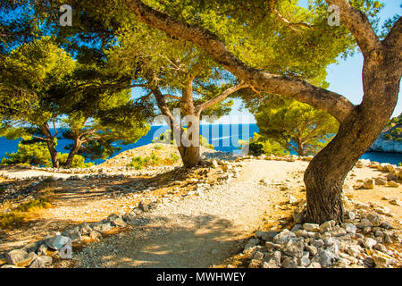 Calanque de Port Miou - fjord near Cassis Village in Provence in France - Stock Photo