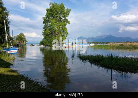 Chiemsee Flood, June 2013, Flooded harbour, Harras Prien, Chiemgau, Upper Bavaria Germany Europe - Stock Photo