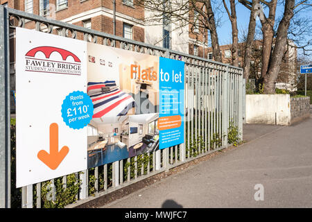 Sign for student college and university accommodation rooms to let in town centre building, Reading, Berkshire, England, GB, UK - Stock Photo