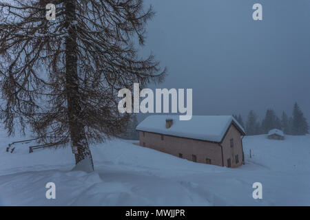 Small farm named Malga Fiorentina covered in snow during a snowfall on a foggy day - Stock Photo