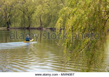 Kayak in a quiet lagoon Toronto Island Park at Toronto Ontario Canada. - Stock Photo