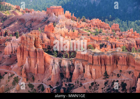 A trail among the hoodoos in Bryce Canyon National Park, Utah, USA - Stock Photo