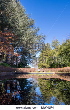 A pond in a ornamental garden with trees and plants reflected on the surface of the water. - Stock Photo