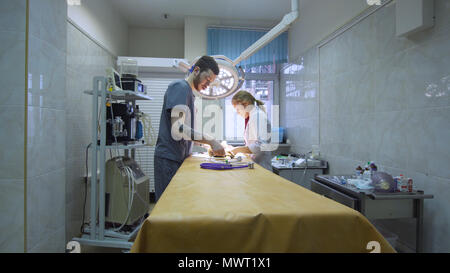 Veterinarians prepare the dog for surgery. Operating room with medical equipment in a veterinary clinic. Table for surgical operations in the hospital. - Stock Photo