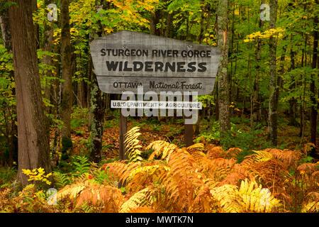 Wilderness sign, Sturgeon River Gorge Wilderness, Sturgeon Wild and Scenic River, Ottawa National Forest, Michigan - Stock Photo