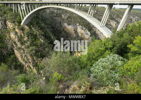Paul Sauer Bridge and fynbos near Nature's Valley, Western Cape, in the Tsitsikamma protected area on the Garden Route, South Africa. - Stock Photo