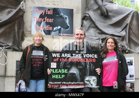 Manchester, UK. 2nd June 2018. Animal rights campaigners holding a sign which reads 'We are the voice of the voiceless', Piccadilly. Manchester, 2nd June, 2018 (C)Barbara Cook/Alamy Live News - Stock Photo