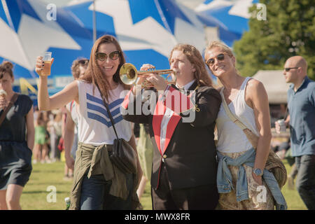 Brixton, London, UK. 2nd June, 2018. Field Day Festival in Brockwell Park, South London. Credit: Jamie Gray/Alamy Live News - Stock Photo