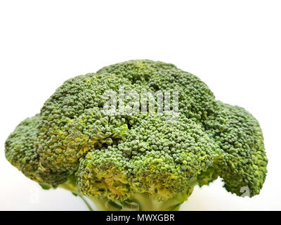 Branch of fresh tasty green broccoli cabbage, Broccoli isolated on white background. - Stock Photo