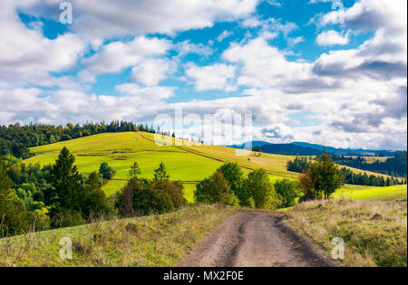 road through grassy meadow on a forested hill. lovely nature scenery under the cloudy sky - Stock Photo