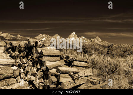 Sepia picture of wood pile next to brush with snow caped Grand Tetons in background under sky with clouds. - Stock Photo