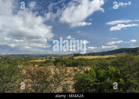 Eastern cape landscape with farmland and high cloud outside port elizabeth on the garden route, eastern cape, south africa - Stock Photo