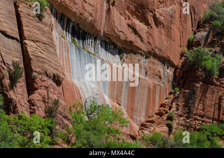 Looking across the canyon at a vertical red sandstone wall with green trees and brush. Large crevasses in wall and cliffs. - Stock Photo