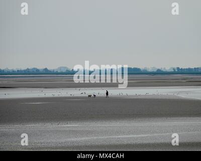 Silhouette of woman, small child and dog playing on the beach, Bay of Somme, Le Crotoy, France - Stock Photo