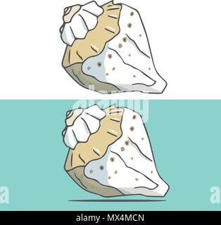 Cockleshell illustration geometric drawing shell font color element sea ocean life yellow font top view clip art on white background - Stock Photo