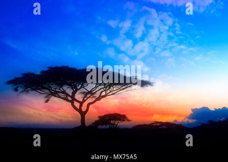 The sun sets on the Serengeti plains in Tanzania, Africa. - Stock Photo