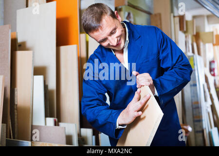 Glad diligent man wearing protective workwear standing with plywood in store - Stock Photo