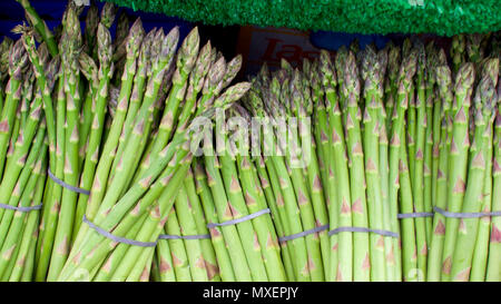 Fresh asparagus for sale at Flavour Fest, Plymouth, UK, June 2018 - Stock Photo