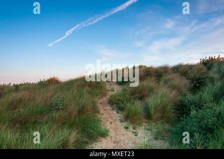 A sandy path leading through the grass on a sand dune in the south of England - Stock Photo