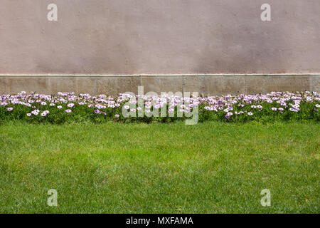 Flowerbed in front of  a concrete  wall  with fresh manicured lawn in formal garden - Stock Photo