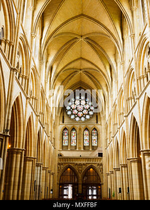 Vaulted roof above the stained glass rose window and columns of the nave of the Victorian Truro Cathedral, Cornwall, UK - Stock Photo