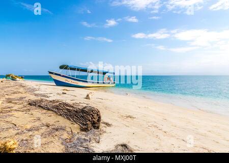 Starfish Beach panama. - Stock Photo