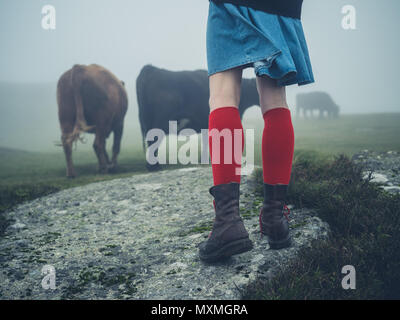 A young woman wearing red socks and hiking boots is walking on the moor in the mist near some cows - Stock Photo